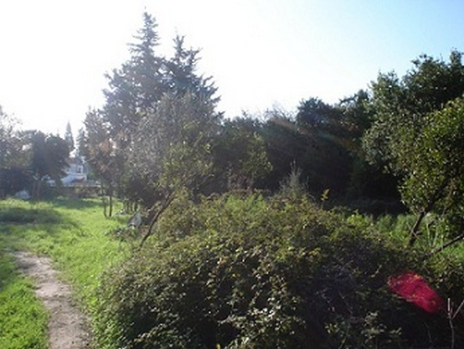 1500m2 Land with an Old House only 250m away from sea