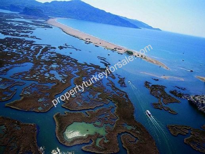 Dalyan agricultural land for sale near Iztuzu Beach