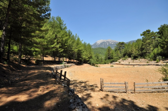 Large Plot of Land with Chalet in Nif near Uzumlu