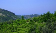 Idyllic Kalkan Land for sale 9600 sqm