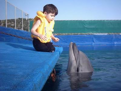 Kas Dolphin Center