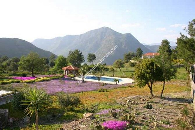 Tranquil environment ideal for nature lovers