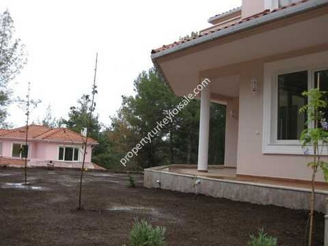 Twin detached villa