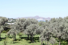 Sandima Land Plot for sale