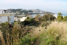 Large land for sale in Yalikavak Tilkicik Bay
